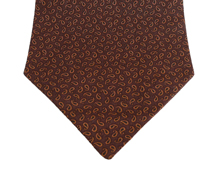 Princeton Aubergine paisley Cotton Day Cravat (Self-tie)